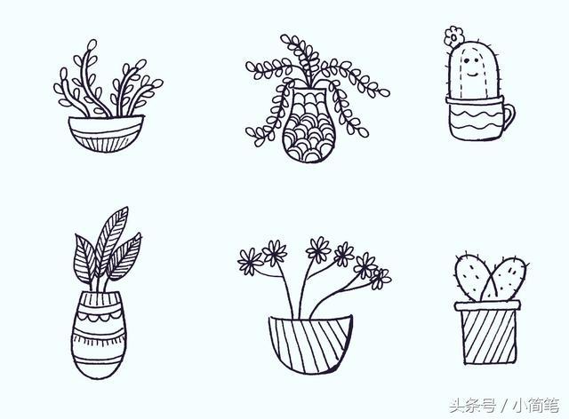 育儿简笔画 几十种盆栽植物元素 先为孩子收下了