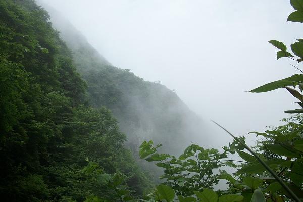 2020洪雅瓦屋山森林公园旅游攻略之八面山-八面山图文介绍