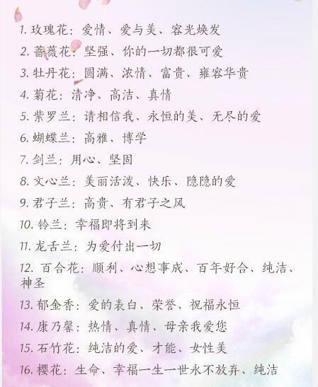 「花艺知识」50种常见花材的花语~(建议收藏)