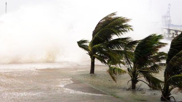 """台风""""天鸽""""已登陆珠海 最大风力14级"""