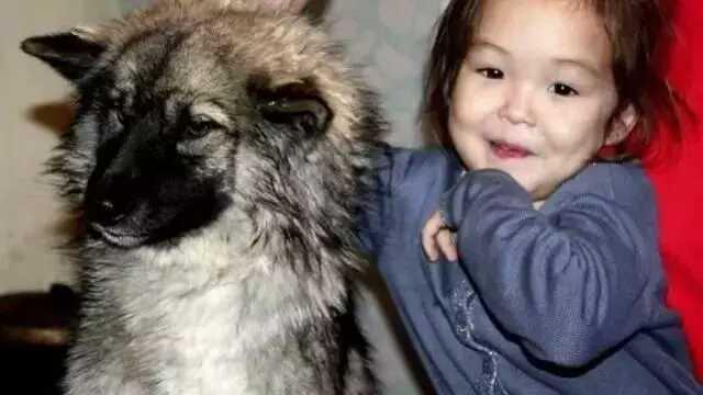 三岁小女孩和狗狗离家出走,3周后狗狗叼着一样东西回来了……