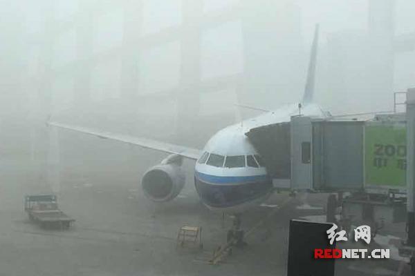 绝命航班朱珠的奶图片