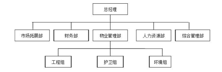 小公司组织架构图