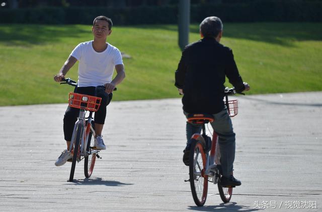 摩拜单车在沈阳骑游们喜爱 大受追捧是为什么呢