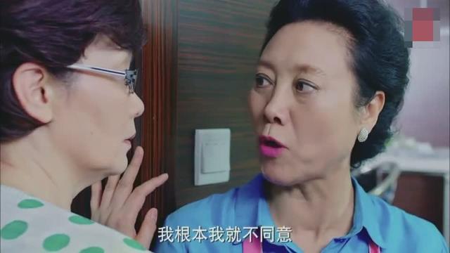 两厉害妈妈专业户,潘虹、王丽云斗戏,演技杠杠的特写没问题