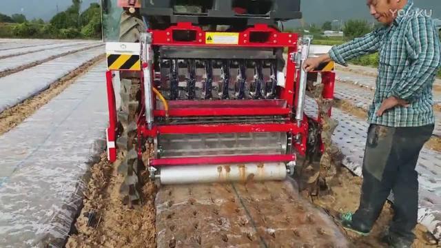 日本大蒜播种机全自动