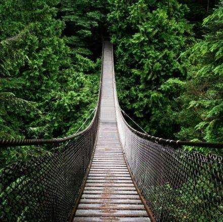 加拿大不列颠哥伦比亚省温哥华:卡普兰奴吊桥