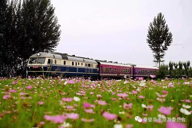 秦皇岛这列小火车,沿途美景让人舍不得眨眼!_新浪看点