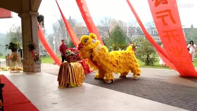 南宁舞狮队|舞狮演出|舞狮舞龙表演|开工奠基典礼醒狮表演|...