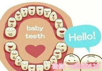 儿童换牙顺序图片