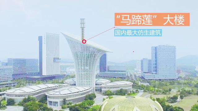 快看:武汉地铁11、19号线和光谷有轨电车T2、T9有新消息了