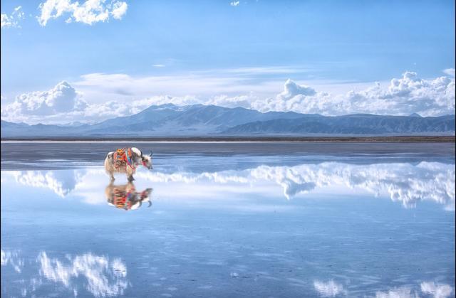 """""""五一小长假""""你想好去哪吗?预约青海湖之旅,这些景点不要错过"""