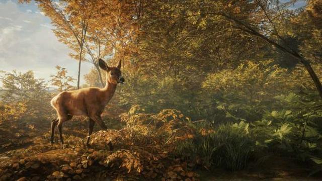 《猎人:野性的呼唤》新预告 登陆Steam,售价88元_网易新闻