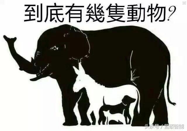 看图找动物 考考你眼力
