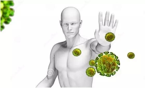 3D动画演示人体淋巴系统组成及运行原理,淋巴细胞如此强大