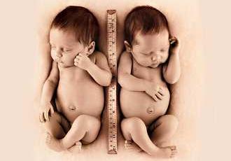 排卵受孕过程图