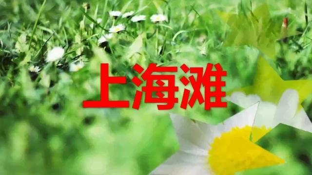 上海滩电视剧全集