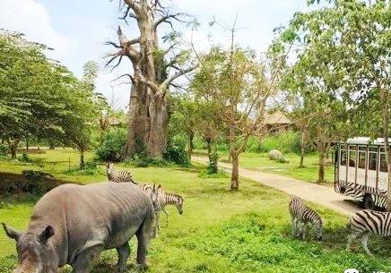 郑州雁鸣湖野生动物园有限责任公司-企业工... -阿里巴巴企业信用