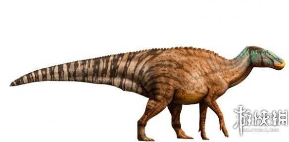 恐龙的种类名称和图片08