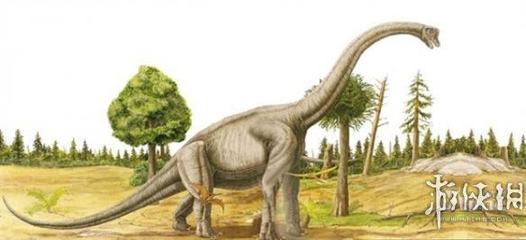 恐龙的种类名称和图片11