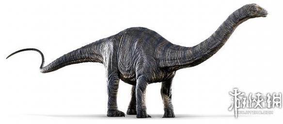 恐龙的种类名称和图片03