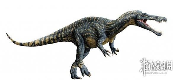 恐龙的种类名称和图片04