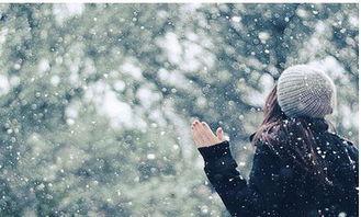 落雪的声音(散文诗) - 素雅静开 - 简书