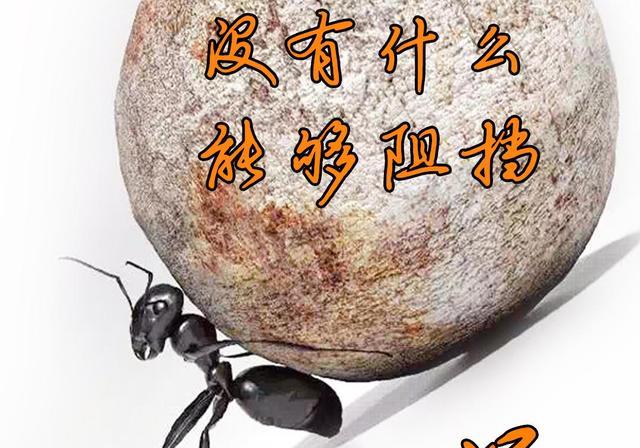 #你的姓氏,我的句子#29董--我姓董,你说董狐直笔不偏不倚,...