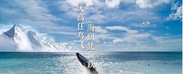海阔凭鱼跃天高任鸟飞手机壁纸