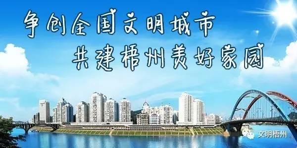 梧州市倒水马水村
