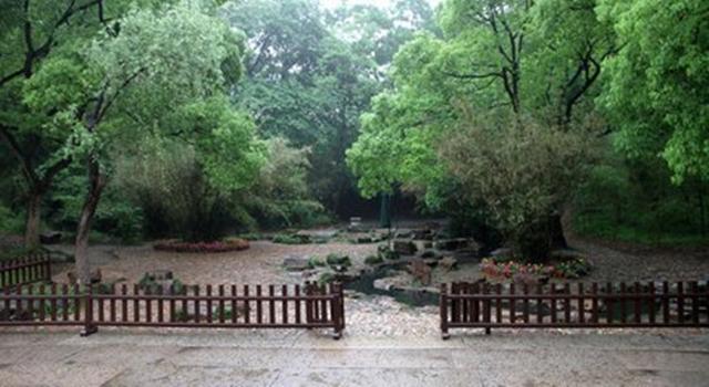 赤水国家竹海森林公园