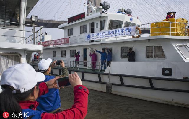 长江江豚拯救联盟在武汉成立