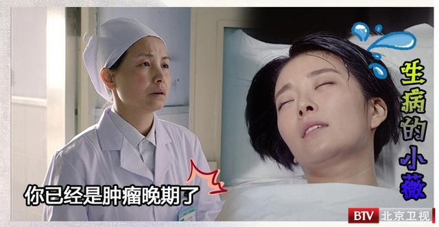 生逢灿烂的日子小薇最后结局 种丹妮为张嘉译从良_今日临沂