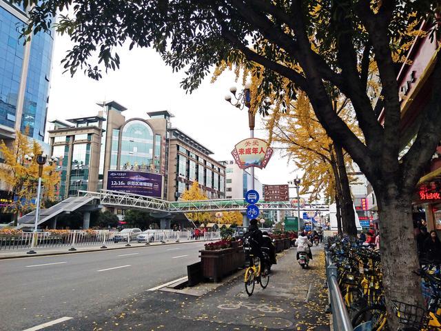 桂林中山中路人行天桥已经成形预计年底将投入使用