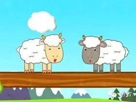 小羊过桥图片
