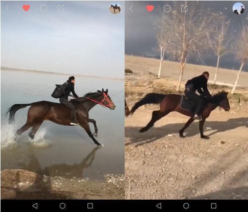 快手上的骑马一族:让我们策马奔腾,奔向2018