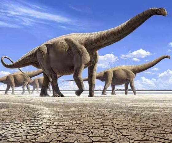 恐龙统治地球1.6亿年,为什么没进化成智慧生物?-第4张图片-IT新视野