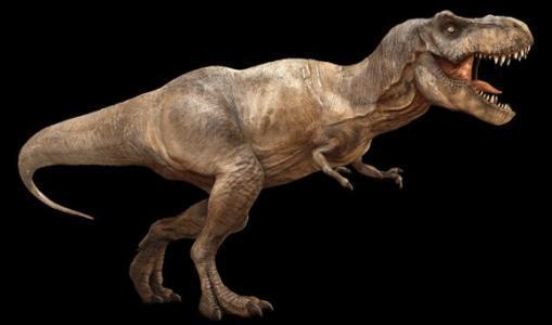 恐龙统治地球1.6亿年,为什么没进化成智慧生物?-第3张图片-IT新视野