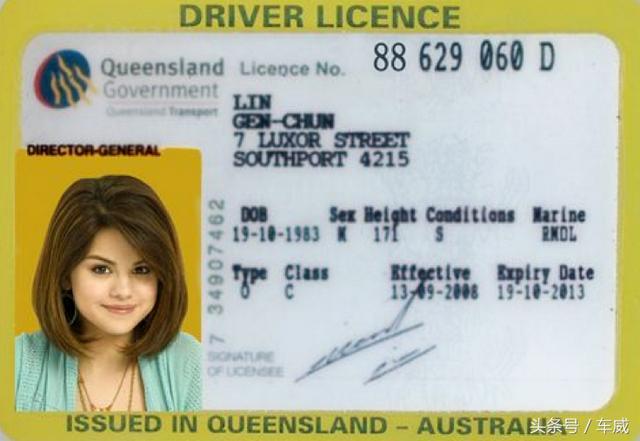 驾驶证行驶证正反面图片