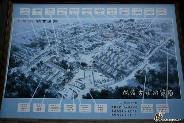 今日特色小镇:上海市金山区枫泾镇