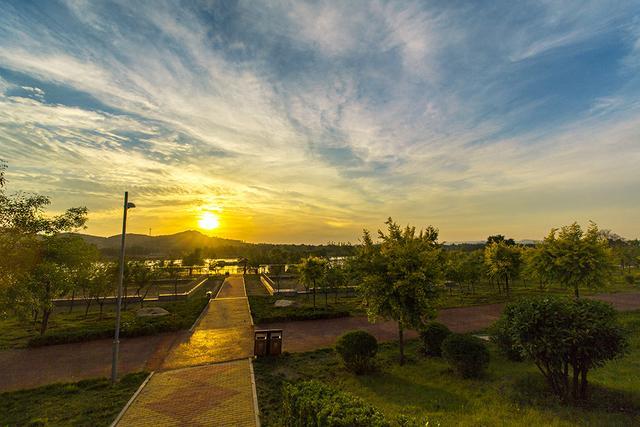 泰安大汶河国家湿地公园的滨水风光带,被高大的观汶阁吸引了进来