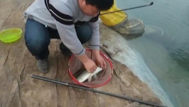 鱼竿头梢短节图片