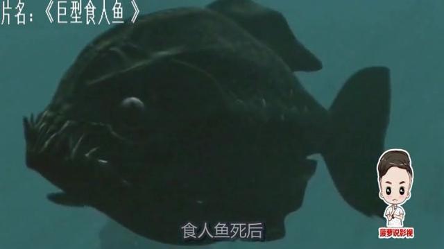 变异食人鱼图片