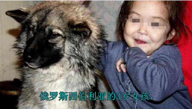 3岁女孩和宠物狗一起失踪,3周后狗狗回来了,咬着女孩的头绳
