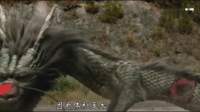 历史上的坠龙事件,老一辈的人亲眼所见,这也是唯一被记载的龙!