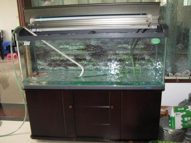 鱼缸里的水多久换一次_养殖致富网