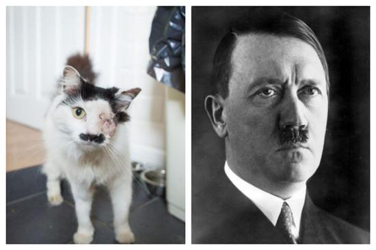 希特勒真人照片