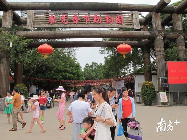 寮步香市动物园地址