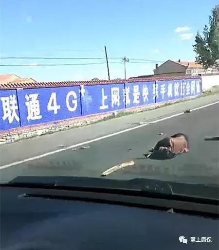 张家口一老年代步车发生车祸,人都撞出来了……_手机搜狐网