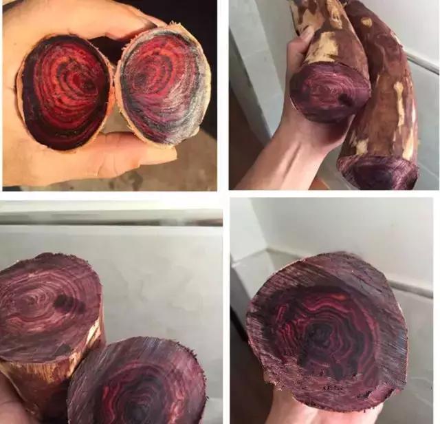 闻到木香,触摸木纹,海南黄花梨原材料赏析